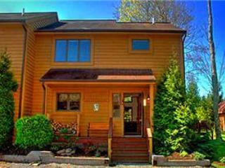 "Deerfield 088 -  ""The Bear House"" - Image 1 - Canaan Valley - rentals"