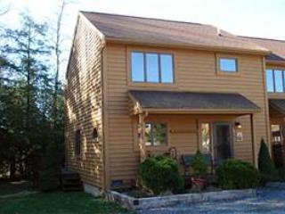 Deerfield 104 - Special Rates! - Image 1 - Canaan Valley - rentals
