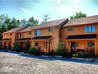 Deerfield 105 - Image 1 - Canaan Valley - rentals