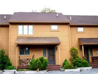 Deerfield 106 - Image 1 - Canaan Valley - rentals