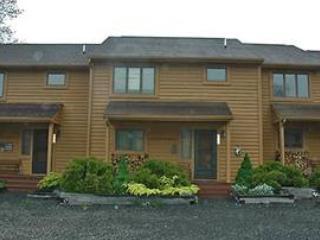 Deerfield 109 - Image 1 - Canaan Valley - rentals