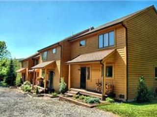 Deerfield 122 - Image 1 - Canaan Valley - rentals