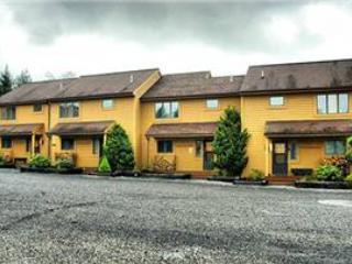 Deerfield 133 - Image 1 - Canaan Valley - rentals