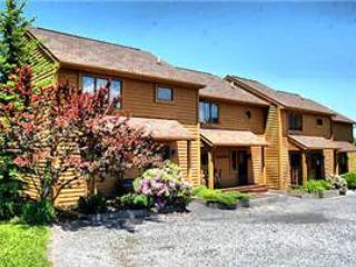 Deerfield 134 - Image 1 - Canaan Valley - rentals