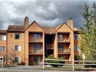 Herzwood Condo  C-202 - West Virginia vacation rentals