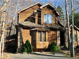 NF 08 - 101 Brookside Drive - Canaan Valley vacation rentals