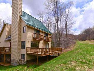NF 27 - 318 Brookside Drive - Canaan Valley vacation rentals