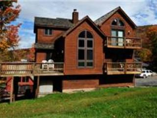 NF 38  -  330 Slopeside Road - MidWk Rates! - Canaan Valley vacation rentals