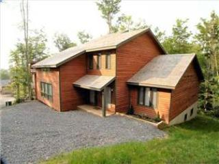 NF 65 - 303 Slopeside Road - Image 1 - Canaan Valley - rentals
