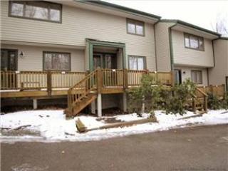 Northwoods A2 - 24 Northwoods Ct. - Image 1 - Canaan Valley - rentals