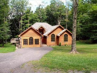 WS 01 -199 Winterset Drive - Canaan Valley vacation rentals