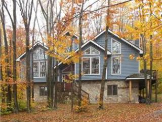 WS 12 -  200 Winterset Dr - West Virginia vacation rentals