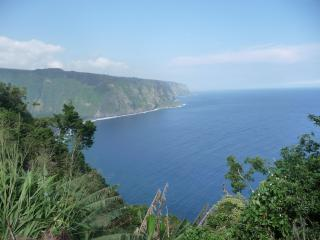 Oceanfront 2BRM, Waipio's Beach below,orchard - Kukuihaele vacation rentals