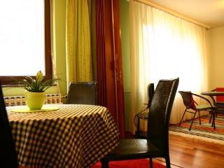 CR104ZR - TAI. FUN - Zagreb vacation rentals