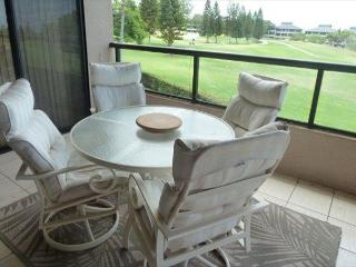 Ocean View Two Bedroom-WF A207 - Kohala Coast vacation rentals