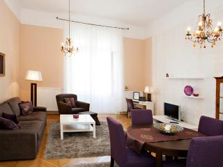 Luxury apartment is in the center! - Budapest & Central Danube Region vacation rentals