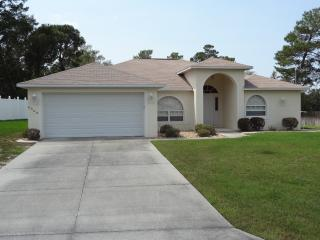 Spring Hill Vacation Villa - Homosassa vacation rentals