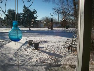 BACHELOR - VIEW on PARK & OTTAWA RIVER - Amos vacation rentals