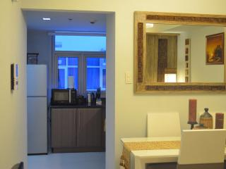 Classy New 1 Bedroom Apartment - Greenbelt Makati - Luzon vacation rentals