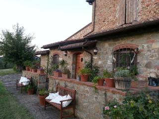 Lovely apts in farmhouse very close to Florence. - Reggello vacation rentals