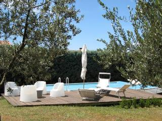Farmhouse Rental in Tuscany, Montalcino - Villa Montalcino - Montalcino vacation rentals