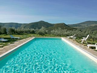 Beautiful Large Villa Near Florence Next to Famous Winery - Casa Rufina - Pontassieve vacation rentals