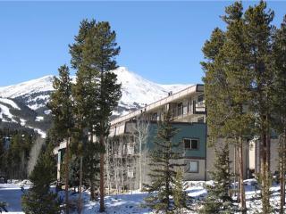 Economically Priced In Town 2 Bedroom Condo - Ski and Racquet B102 - Breckenridge vacation rentals