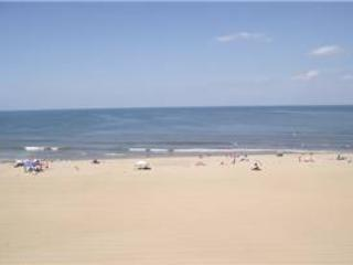 A-406 Funtastic - Image 1 - Virginia Beach - rentals