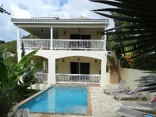 Satori Villa St John walk to water, pool, full house a/c, hottub - Saint John vacation rentals