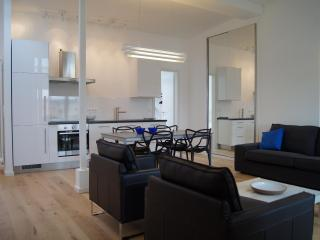 Elegant apartment Prenzlauer Berg Berlin - Berlin vacation rentals