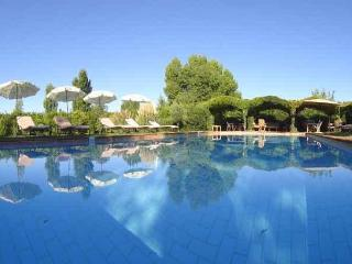 house with pool in montpellier south france - Castelnau-le-Lez vacation rentals