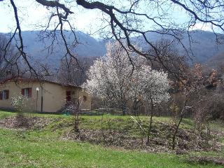 Beautiful 3 bedroom Bagnara di Romagna Bed and Breakfast with Internet Access - Bagnara di Romagna vacation rentals