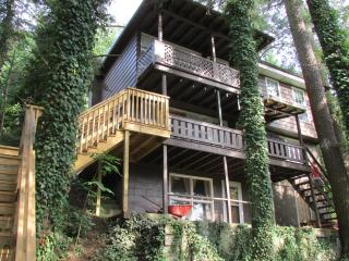 Nice Cottage with Deck and Internet Access - Williamsport vacation rentals
