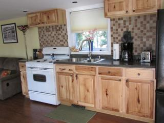 Nice Cottage with Deck and A/C - Williamsport vacation rentals