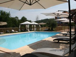 Gite du Laurier, Charming 1 Bedroom Cottage in Brignoles - Var vacation rentals