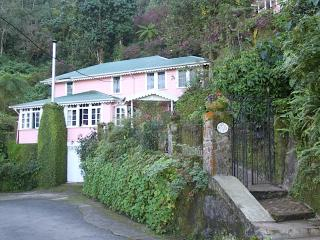 Coolshade: Blue Mountain English Country Cottage - Jamaica vacation rentals
