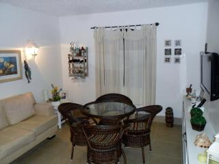Quiet House For Quiet Groups - Rio de Janeiro vacation rentals