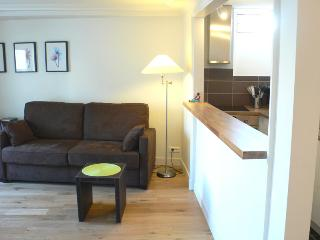 Two bedrooms   Paris Saint Germain des Pres district (343) - Paris vacation rentals