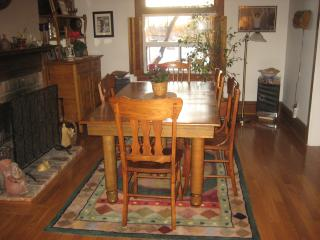Lovely Comfortable Home in popular Toronto area - Toronto vacation rentals