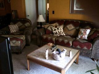 Camelback Area Condo - Phoenix vacation rentals