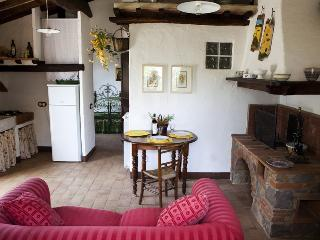 Lovely Cottage in Radicofani with Outdoor Dining Area, sleeps 3 - Radicofani vacation rentals