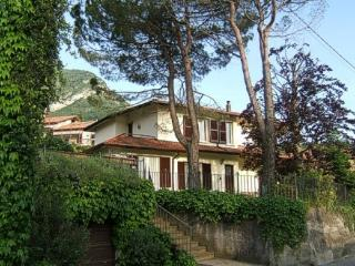 Spacious apartment in villa with lovely  garden - Lierna vacation rentals
