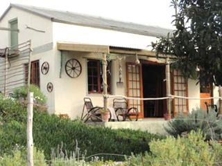 Driftwood Cottage - Bredasdorp vacation rentals