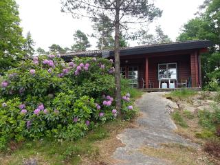 Rent your own lovely cottage on an island 5000 m2 in a very quiet nature. - Henan vacation rentals
