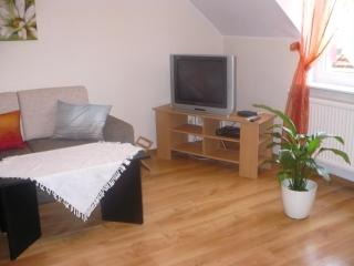Adorable Condo with Grill and Internet Access in Gdansk - Gdansk vacation rentals