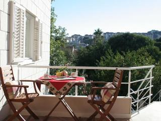 Floral magic of Dubrovnik  terrace/parking - Dubrovnik vacation rentals