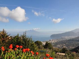 Casa Gaia Sorrento BIOvacanze - Sorrento vacation rentals