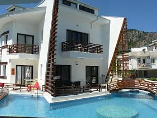 Modern 3 bed apartment a stones throw to riverside - Dalyan vacation rentals