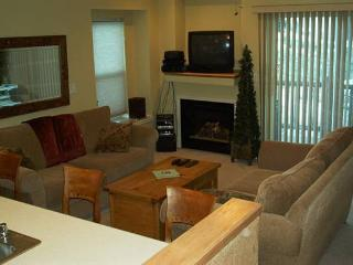 Amazing - Spectacular Views Close to Everything - Steamboat Springs vacation rentals