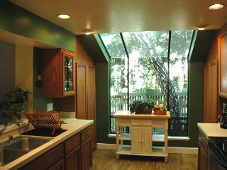 3 b/r bright & beautiful home - Mountain View vacation rentals